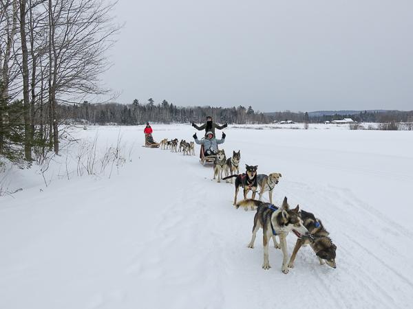 Traîneau à chiens - Mauricie - Le Baluchon (10 sur 18)
