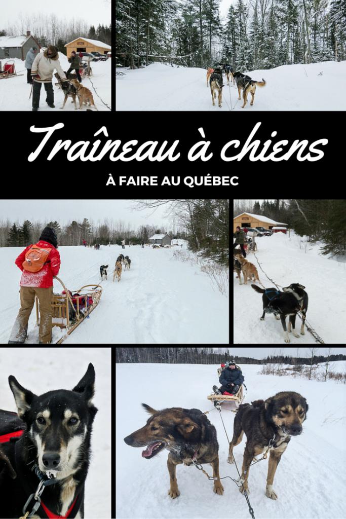 Traineau-a-chiens