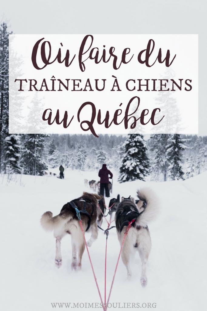 Traîneau à chiens en Mauricie - Où faire du chien de traineau au Québec