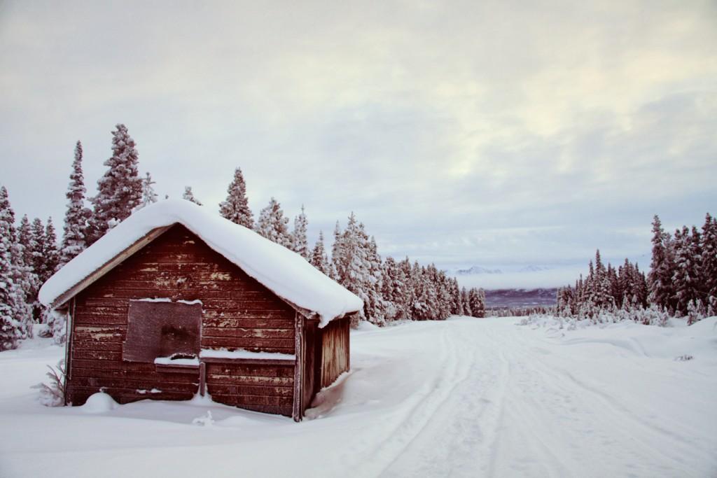 Cabane au Yukon - Émylie TM
