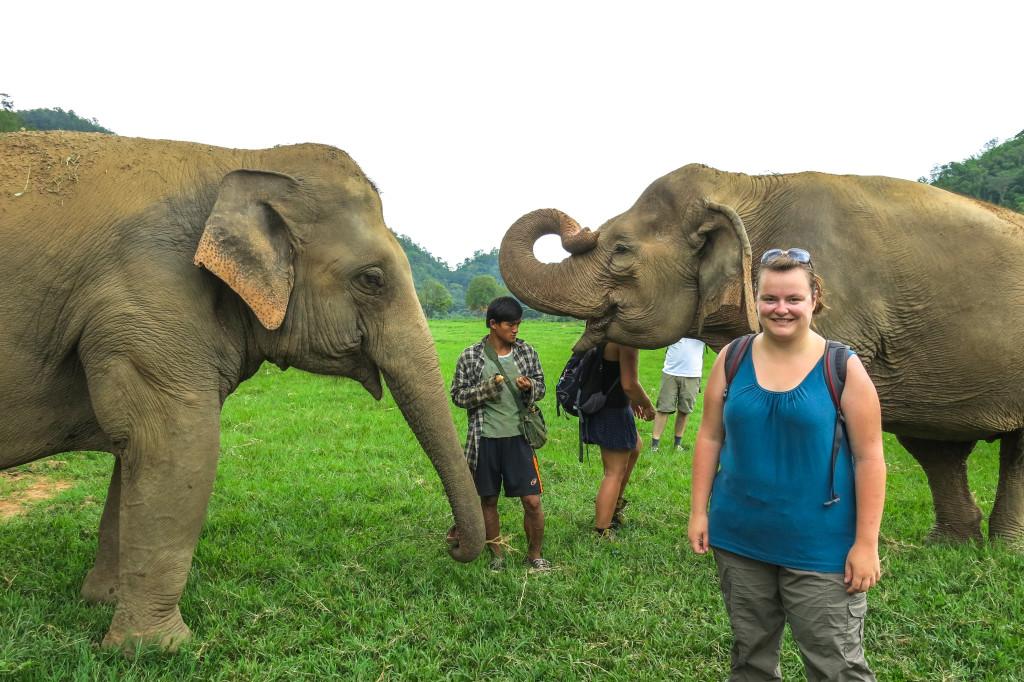 Jennifer entre deux éléphants