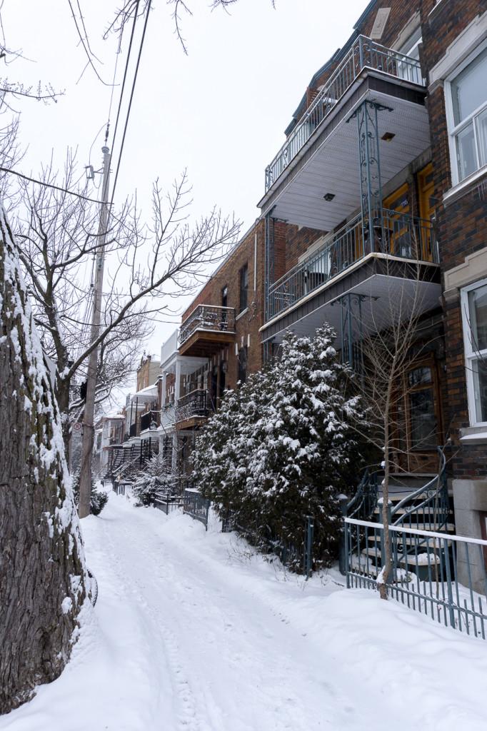 Rue de Villeray - Montréal, Québec, Canada-15