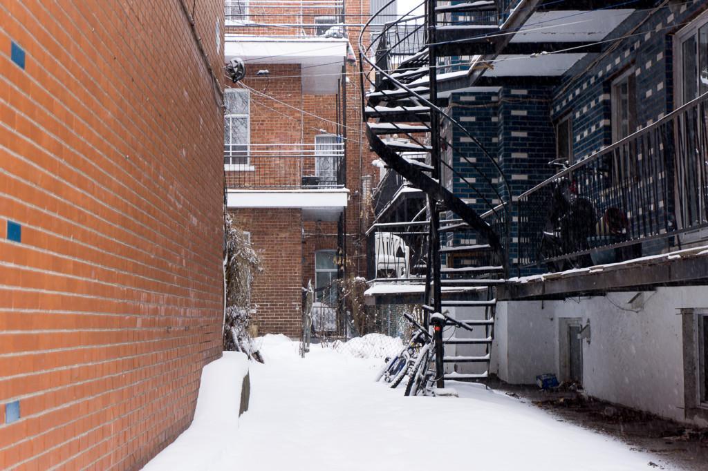 Ruelle de Villeray - Montréal, Québec, Canada-5