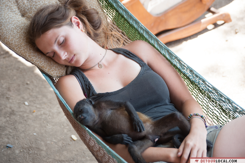 Alizé avec un singe au Costa Rica