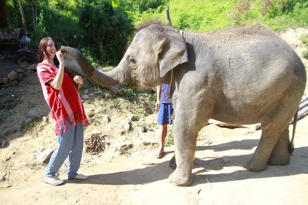 Éléphant en Thaïlande, Camille de l'Oiseau Rose