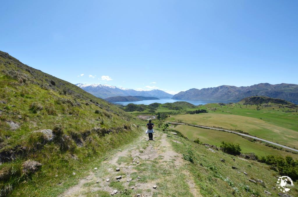 Nouvelle-Zélande - Clo, Évasions Gourmandes