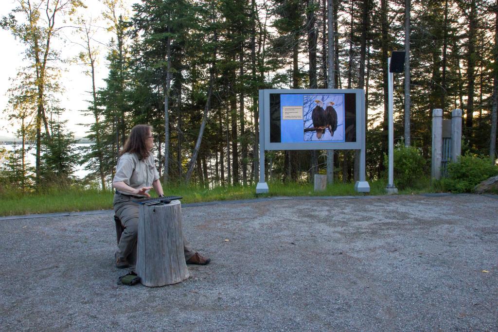 Parc national du Lac-Temiscouata - Atelier pygargue