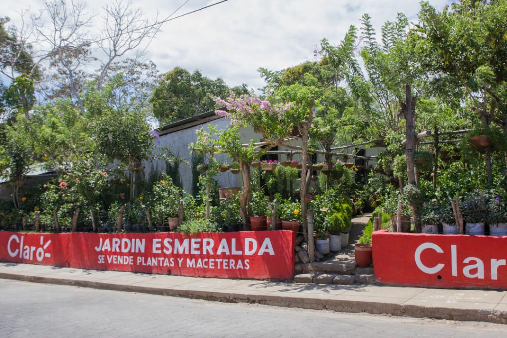 Jardin de Catarina - Pueblos Blancos