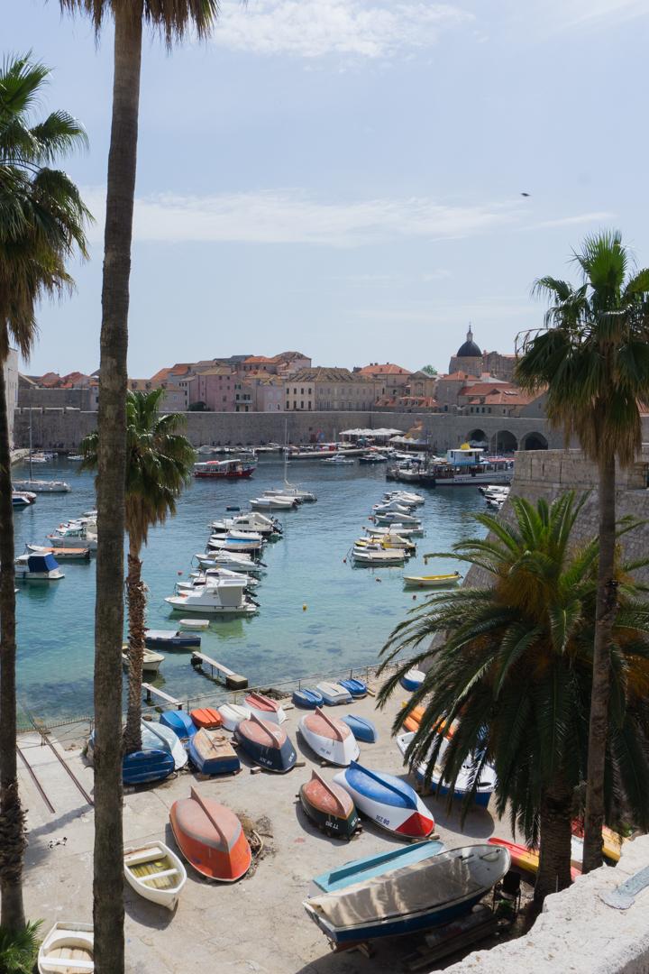 Palmiers et bateaux