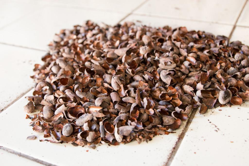 Restes des grains de cacao - Granada - Choco Museo