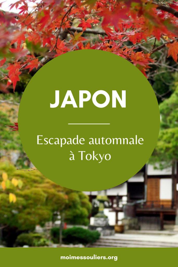 Escapade automnale à Tokyo Japon
