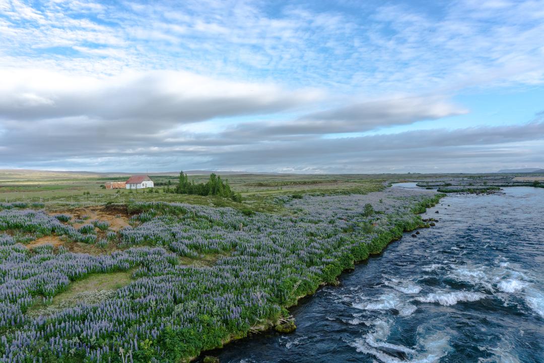 Cours deau et petite maison - Islande