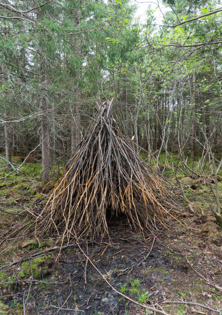 Refuge Pageau - Abitibi-Temiscamingue - Amos - Castors