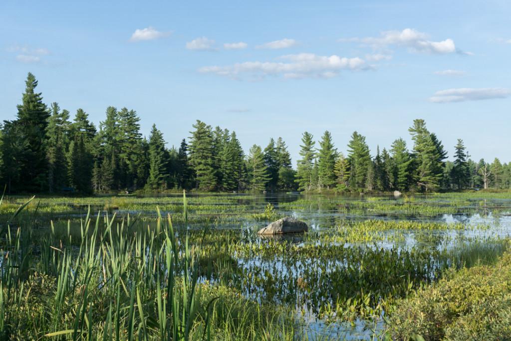 Lac a la Barbue - Parc national de Frontenac