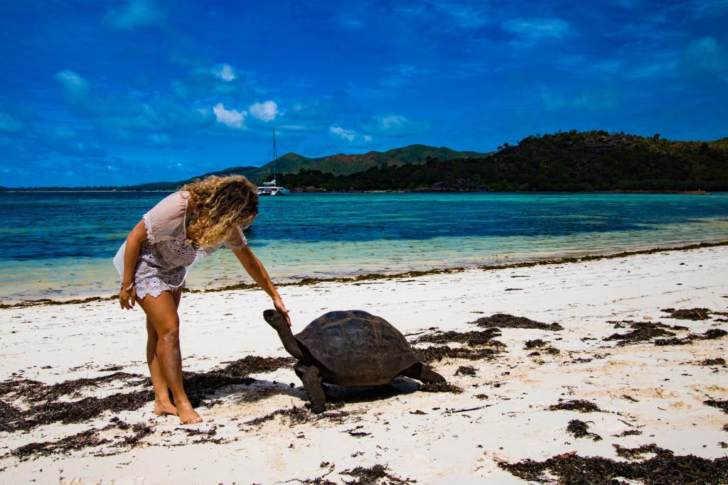 Itinera Magica aux Seychelles