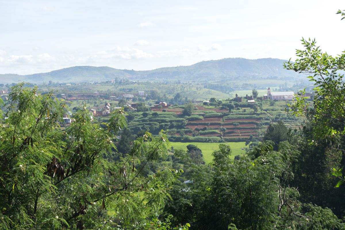 Mes premières rizières vues à Madagascar
