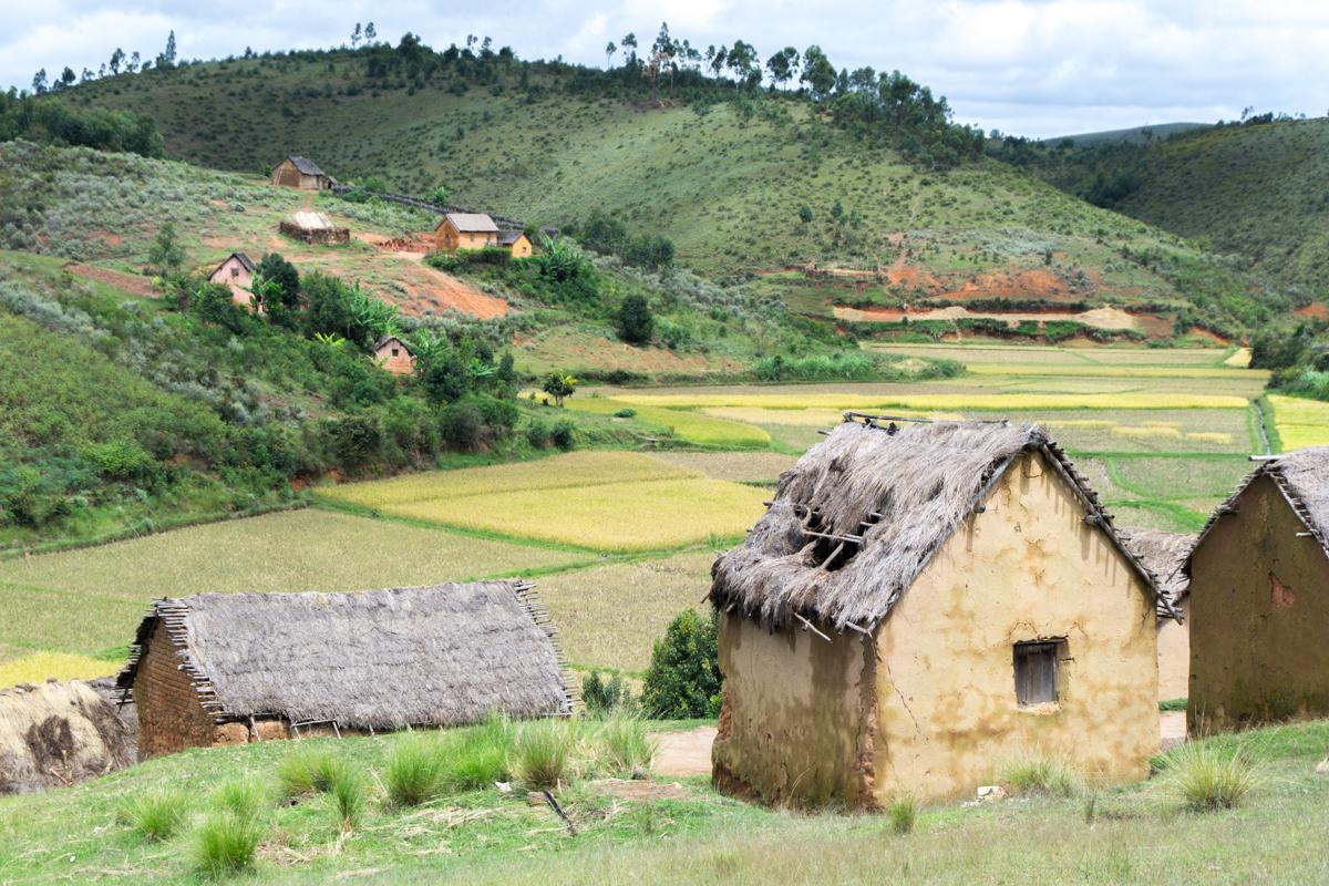 Village malgache avec multiples huttes à l'arrière-plan