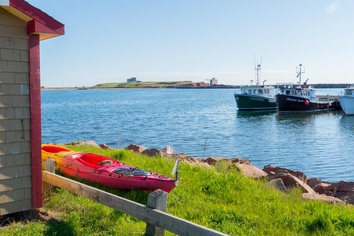 Site de la côte à l'Étang du Nord