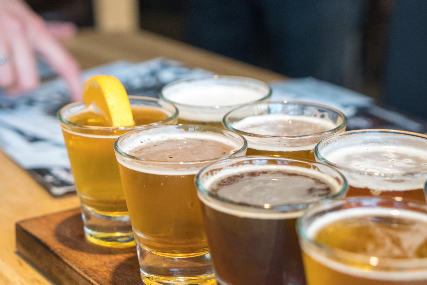 Verres de bière à la microbrasserie du Edgar Hyperlodge