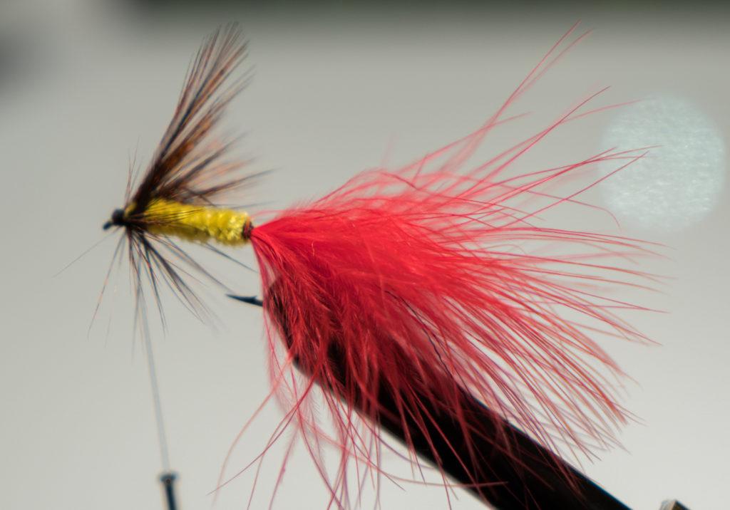 Mouche à pêche rouge