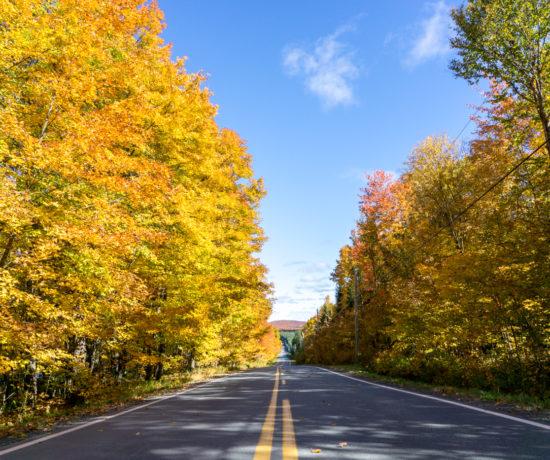 Route en automne - ligne jaune - Centre-du-Québec - Canada