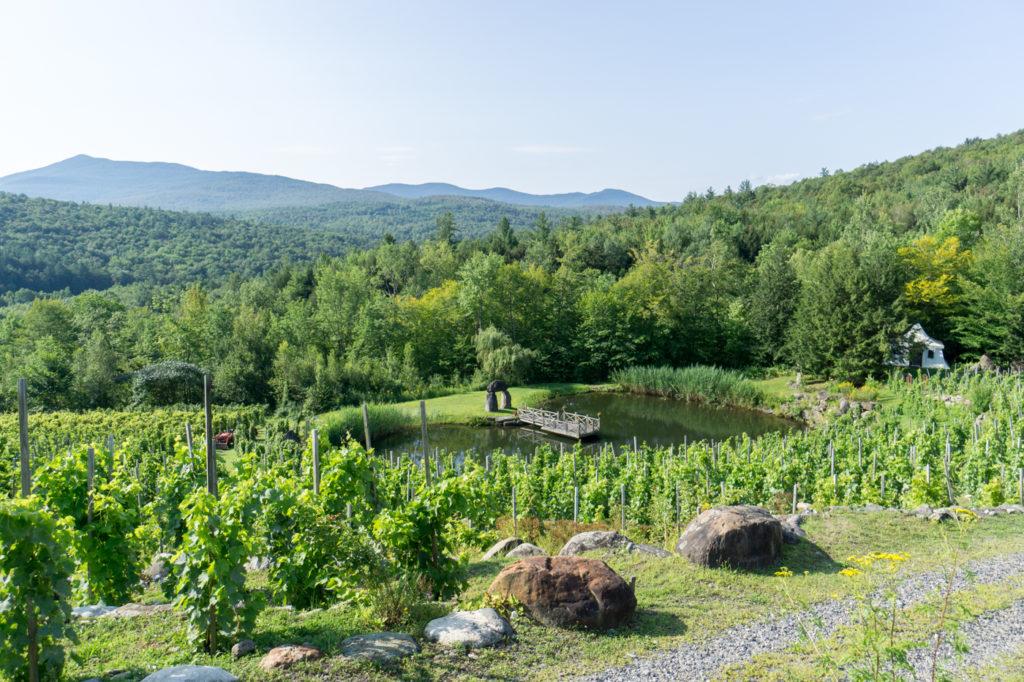 Sur la route des vins des Cantons-de-l'Est