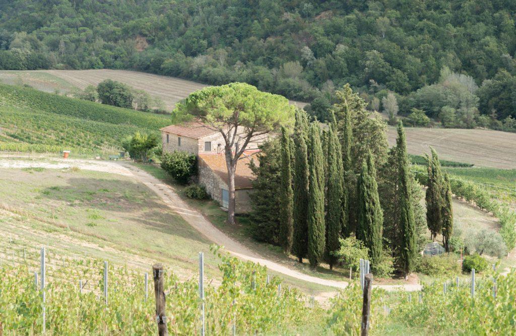 Acquapietra Guesthouse vu du vignoble