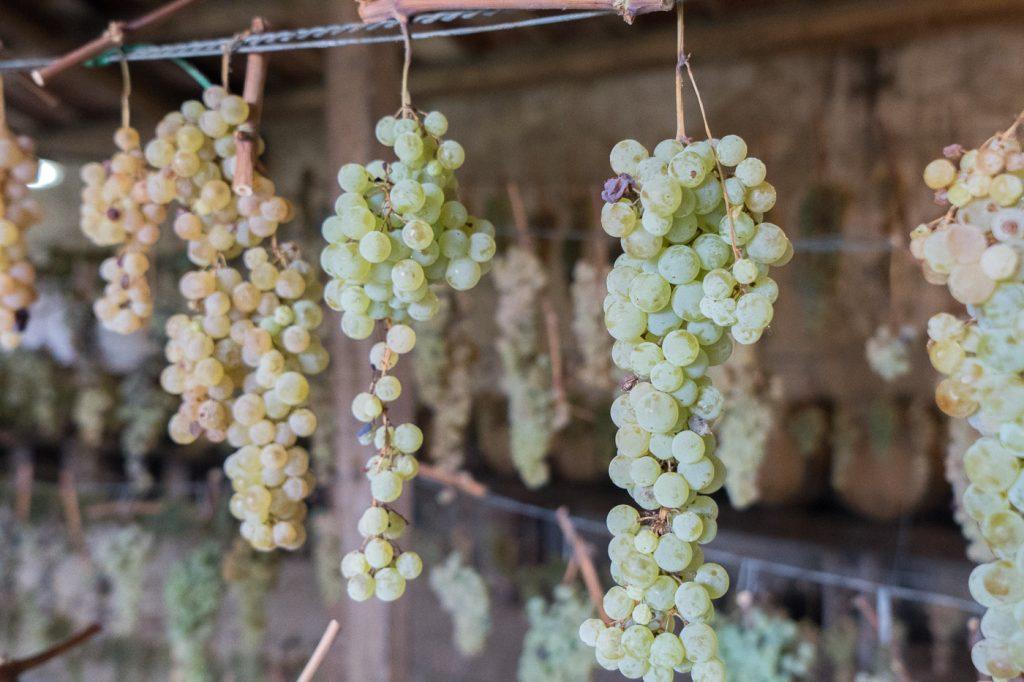 Comment produire du vin santo - Quoi boire en Toscane - Italie