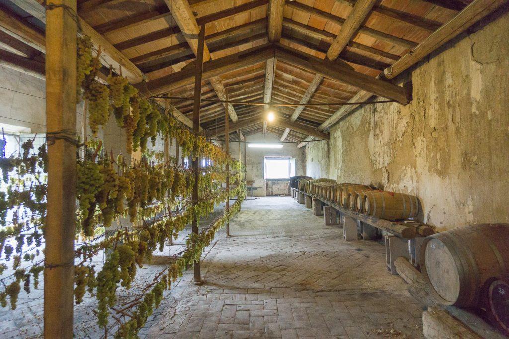Intérieur de la grange d'un producteur de vinsanto toscan