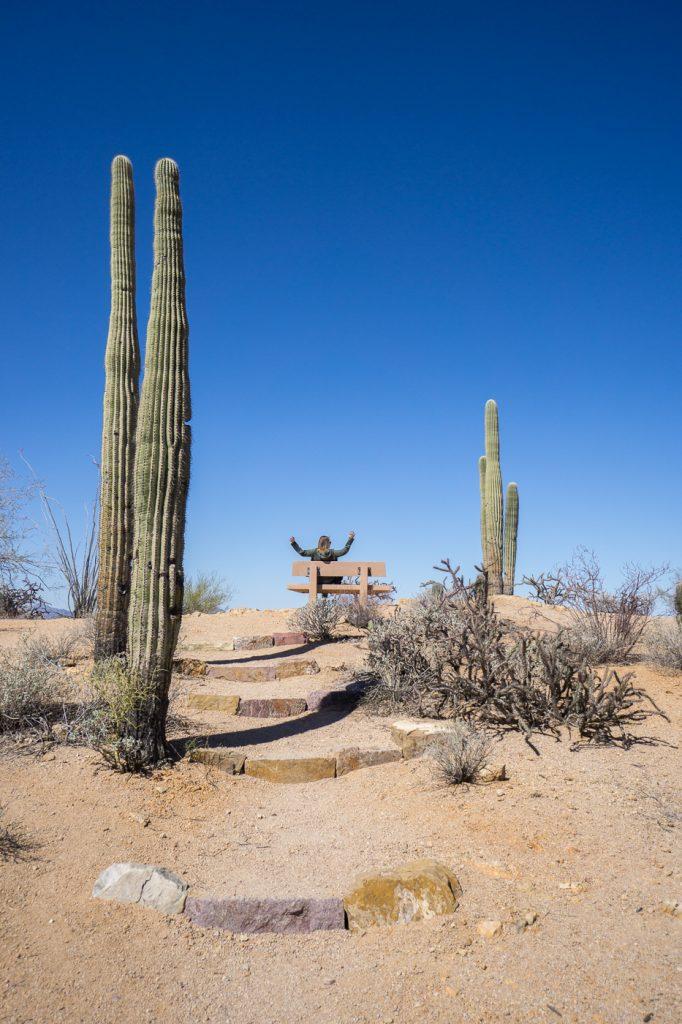 MC Globetrotteuse au sommet de la randonnée Saguaro National Park loop lookout
