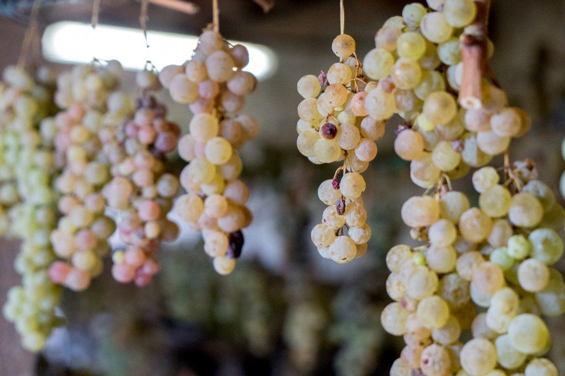 Raisins suspendus pour produire du vinsanto - À essayer en Toscane avec les cantuccini