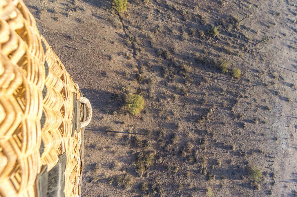 Sol vu de la montgolfière avec cactus