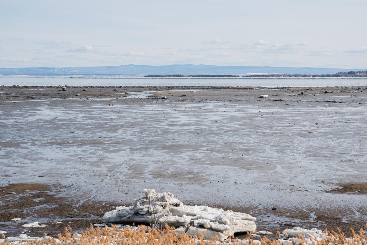 Bord du fleuve Saint-Laurent au Québec