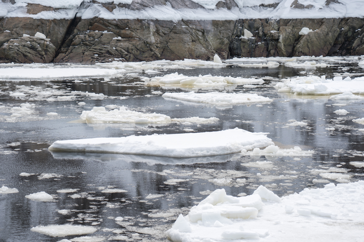 Morceaux de glace sur le fleuve
