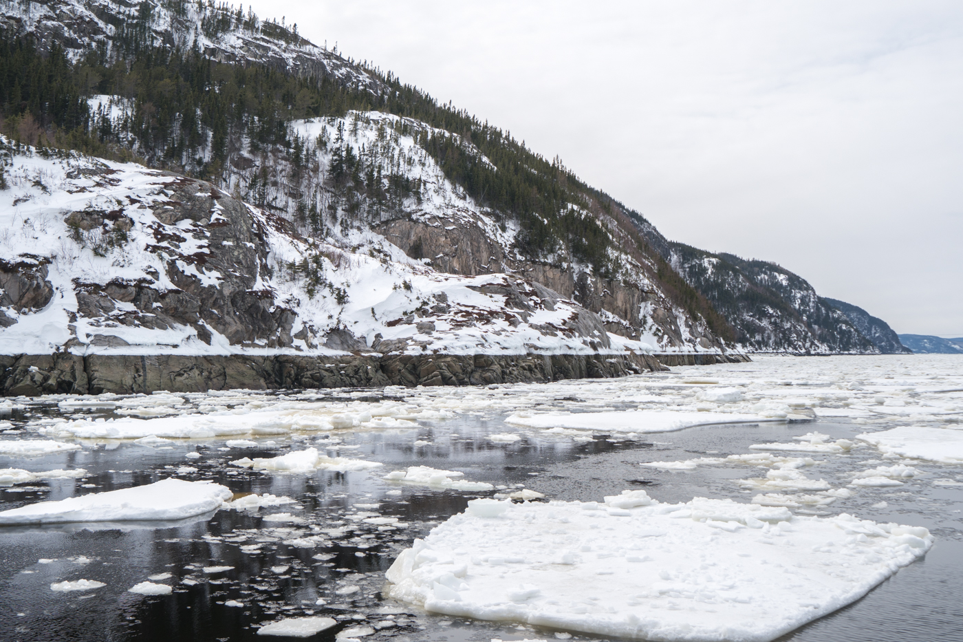Paysage hivernal de Charlevoix