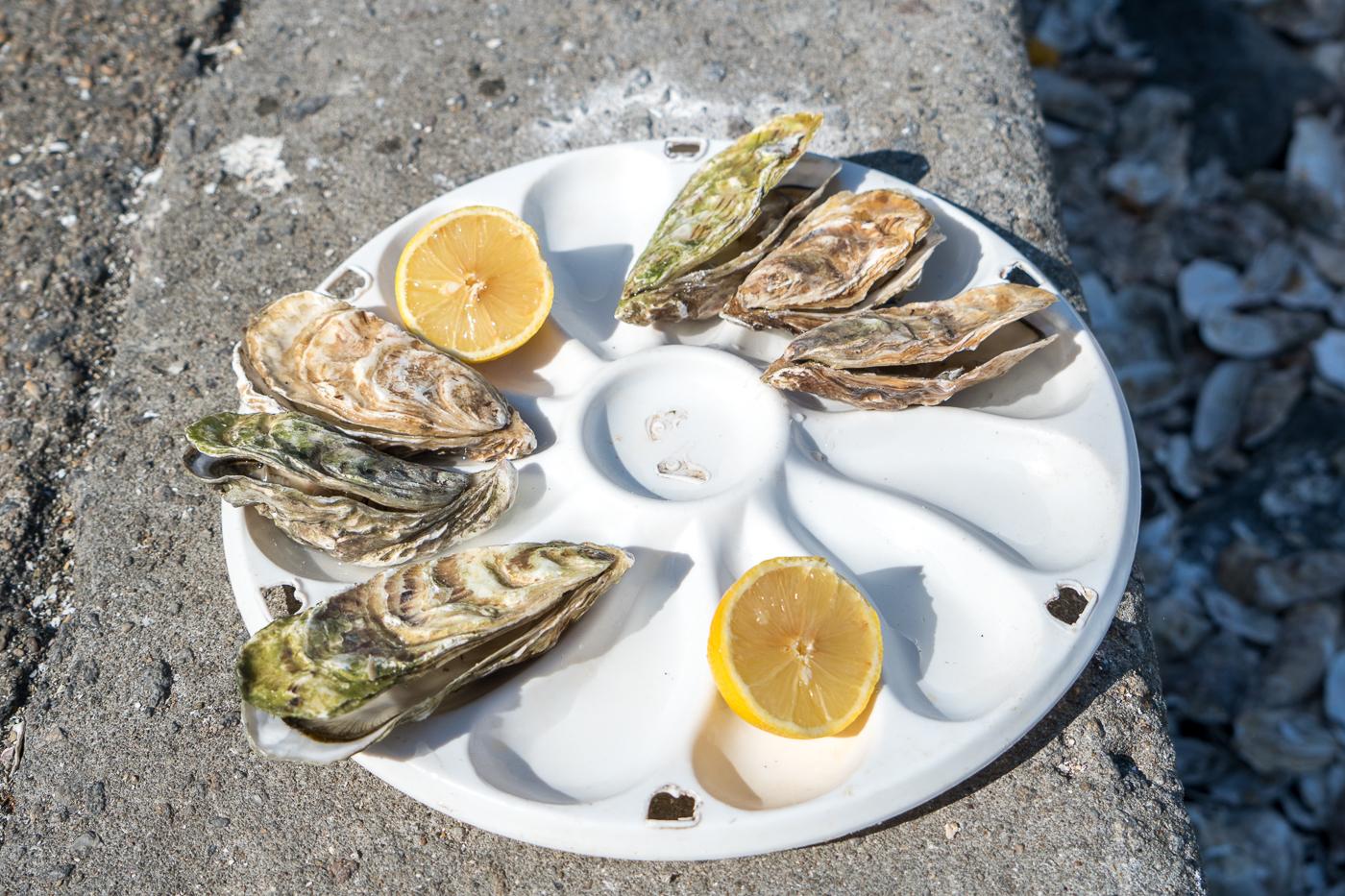 Huîtres fraîches et citron à manger à Cancale au bord de l'eau