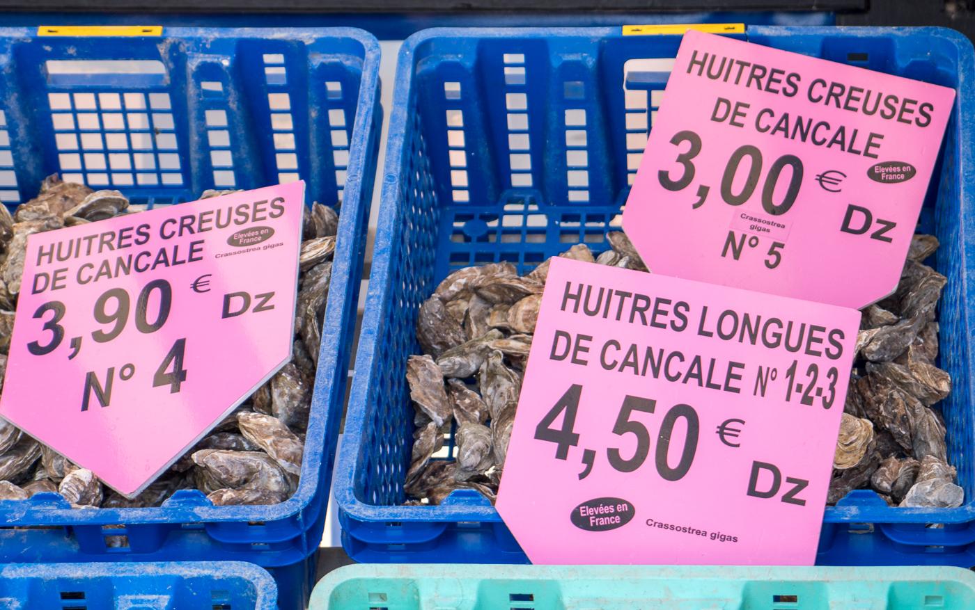 Huîtres de Cancale en bac