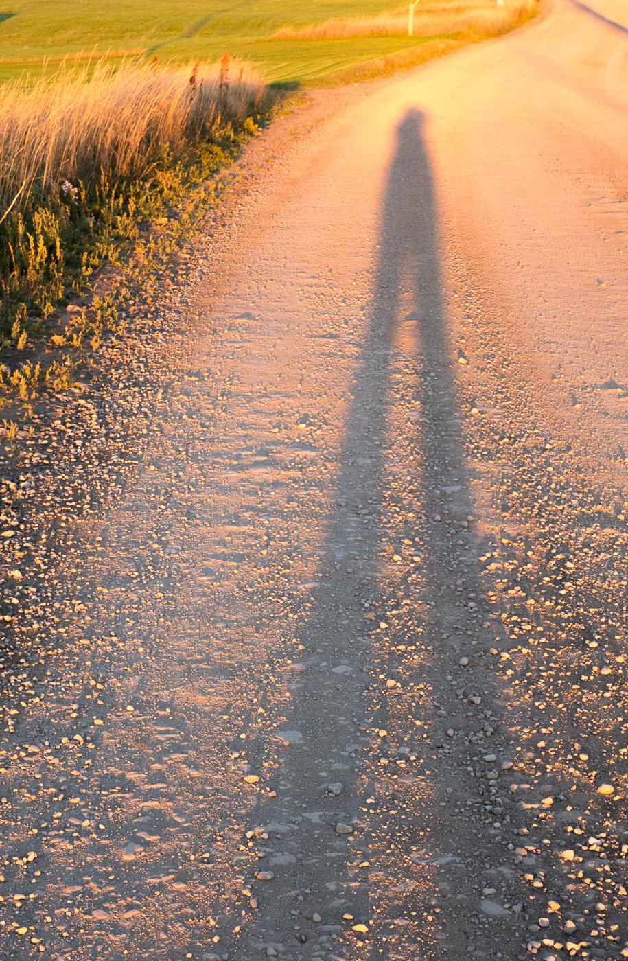 Mon ombre au coucher de soleil - Jennifer