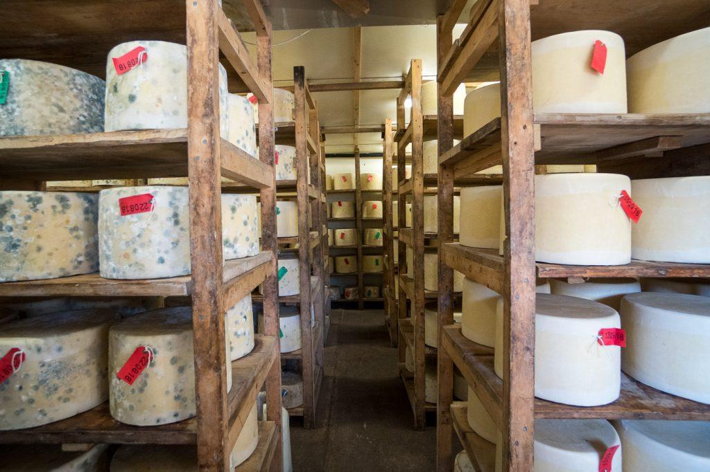 Étalages de fromage de Quickes Farm