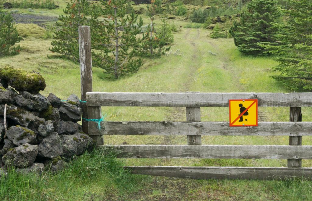 guide de voyage Islande insolite, affiche de caca au sud de l'Islande