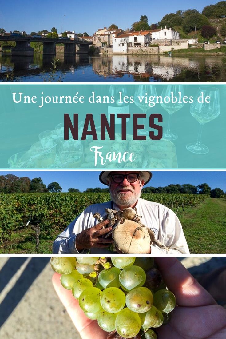 Journée dans les vignobles de Nantes, France