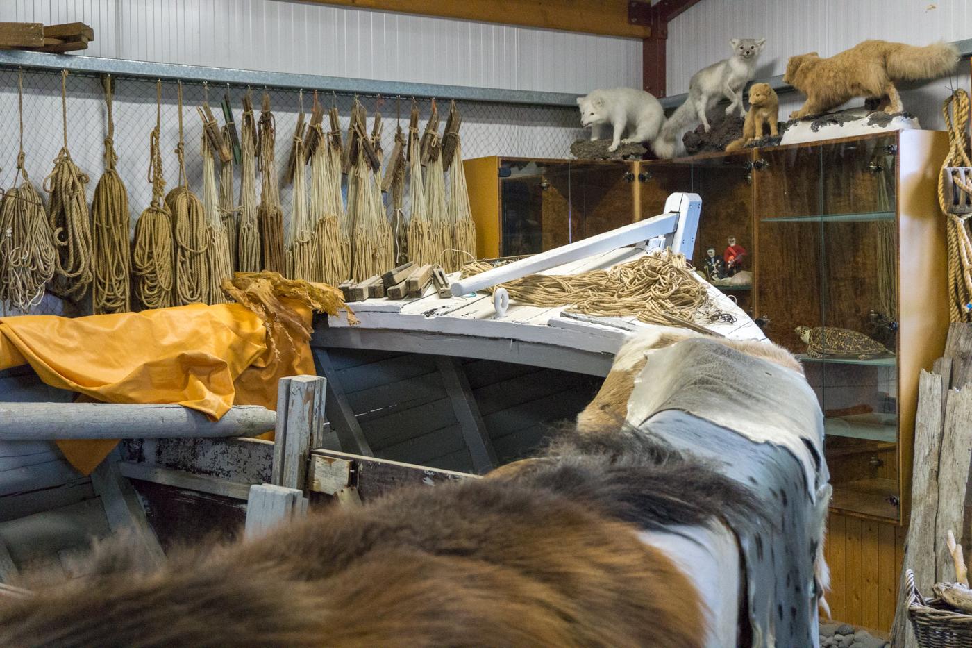 Musée du requin - Hakarl - Péninsule de Snaefellsnes, Islande