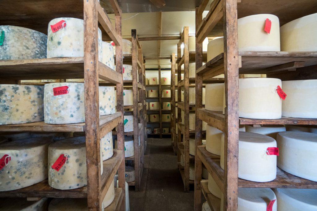 Entrepôt de meules de fromage