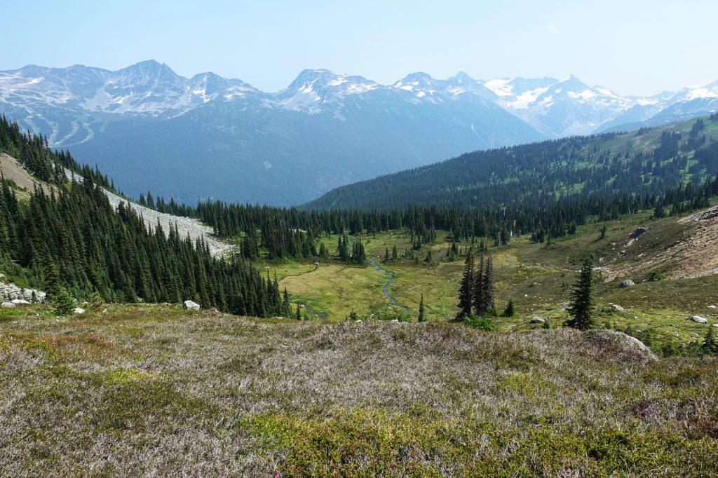 Vue panoramique du sentier High Note dans les Rocheuses Canadiennes à Whistler