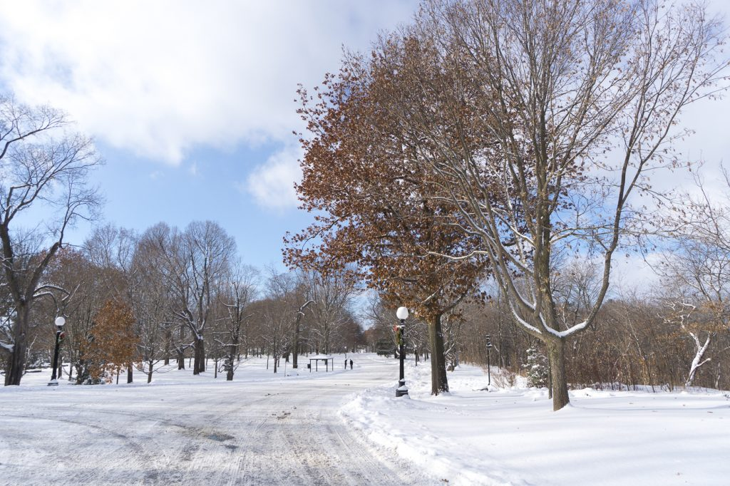 Parc-jardin du Rideau Hall d'Ottawa, Sussex Drive