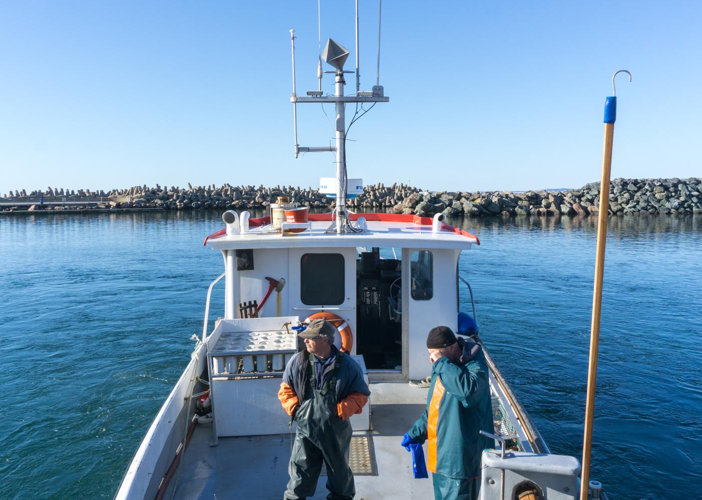 Kevin et Jeannot Aucoin sur leur bateau homardier dans le port de Cap-aux-Meules