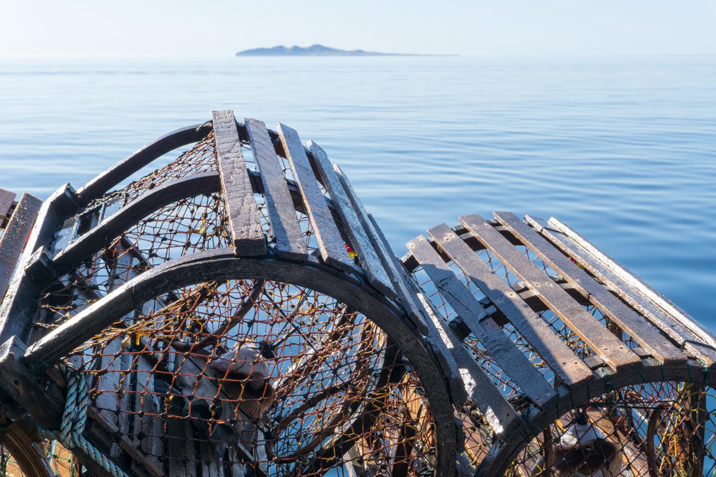 casiers à homard et l'île d'Entrée au loin, pêche au homard