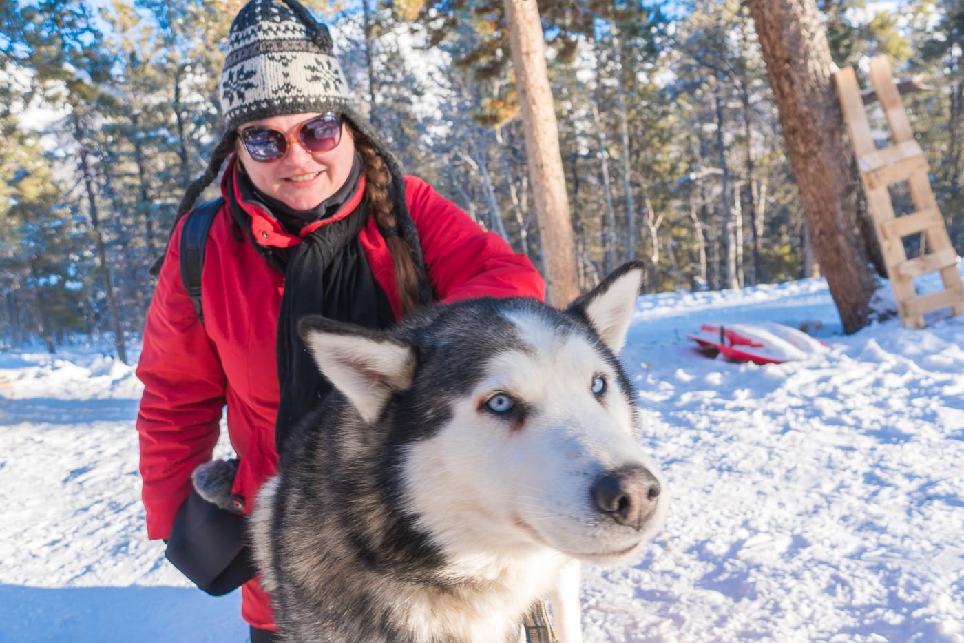 Jennifer avec les chiens de traîneaux Alpen Huskies du Yukon