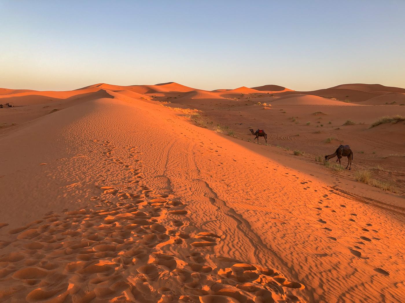 Petit matin au bivouac de Merzouga - Nuit dans le désert du Sahara au Maroc