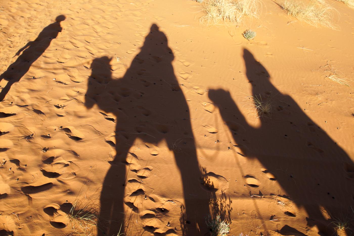 Mon ombre sur les dromadaires au Maroc